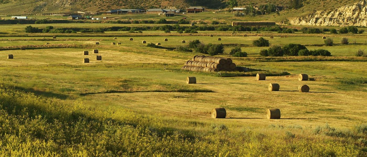 OW Ranch   Powers Land Brokerage